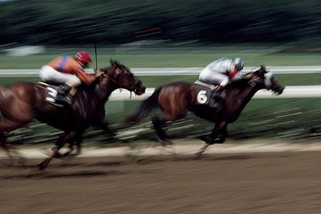 Horse Races at Les Bois