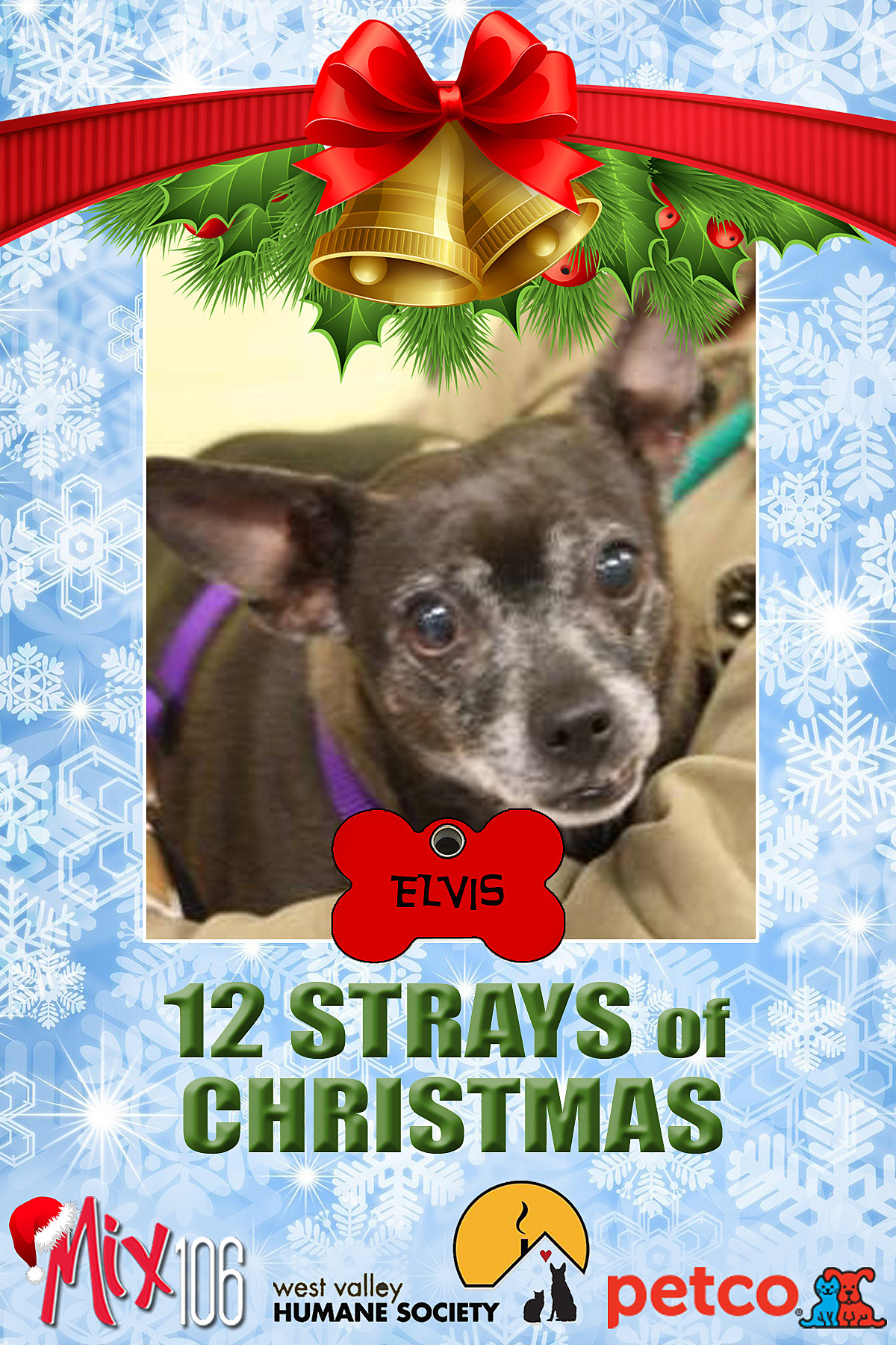12 strays of christmas ELVIS