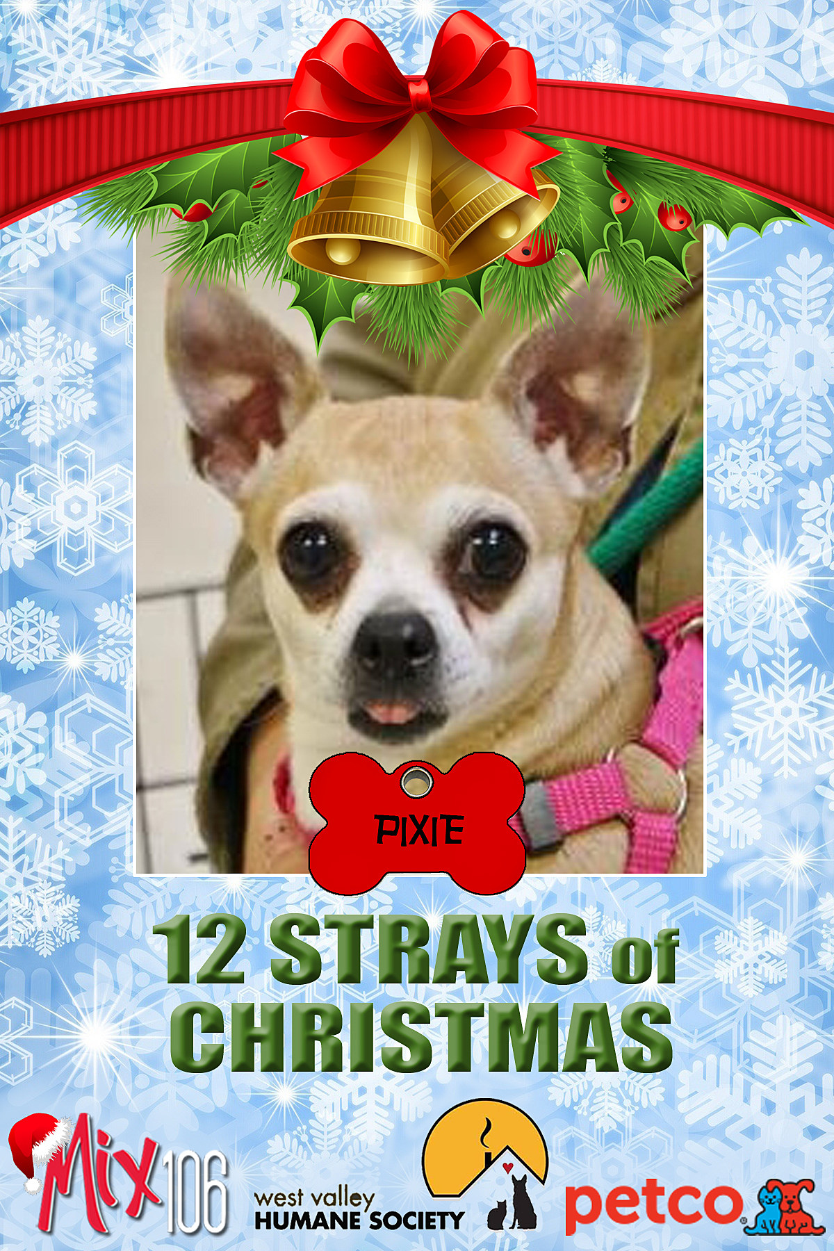 12 strays of christmas PIXIE